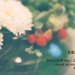 【11/25更新】写真展「秋風」