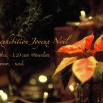 【1/20更新】写真展「Joyeux Noël」(12月撮影分の花写真展)