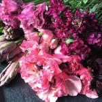 2016年2月のtocolier flower week「so sweet」