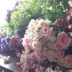 【4/22更新】2016年4月のflower week「リラの咲くころ」