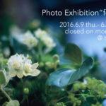 【6/5 更新】写真展「forest」