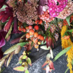 【10/28更新】2016年10月のflower week&花撮週間「autumn leaves」