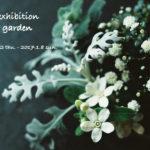 写真展「winter garden」(11月撮影分の花写真展)