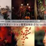 【川野恭子さん写真展@ホトリ】11/16(水)、17(木)インスタレーション撮影会