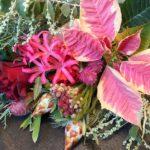 【12/18更新】2016年12月のflower week&花撮週間「Joyeux Noël 」