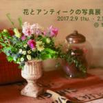 【2/20更新】花とアンティークの写真展 vol.5